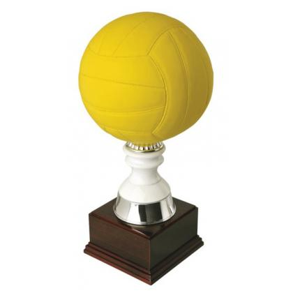 Picture Cup for volleyball match - Astra Argenti